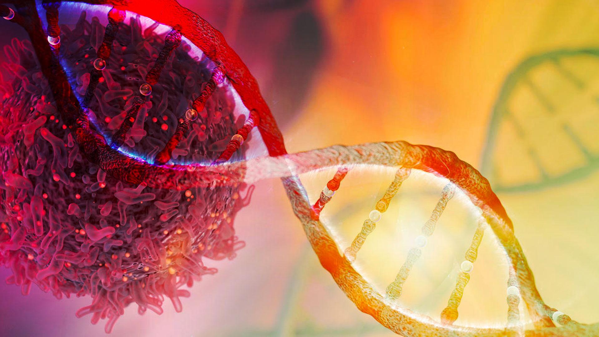 Infecções e câncer: o que você deve saber